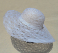 "Hat Supply Scallop Horse Hair Hat Society Style Hat 4.75"" Brim"